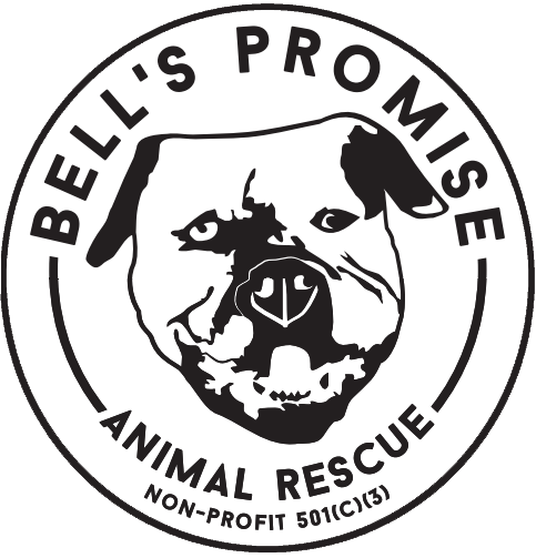 Bells Promise Rescue